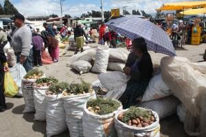 Mercado10